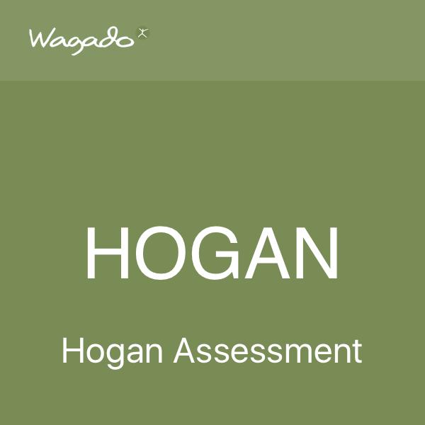 Hogan assessment Wagado