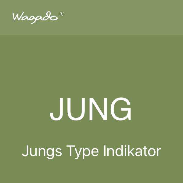 JTI - Jungs type indikator Wagado