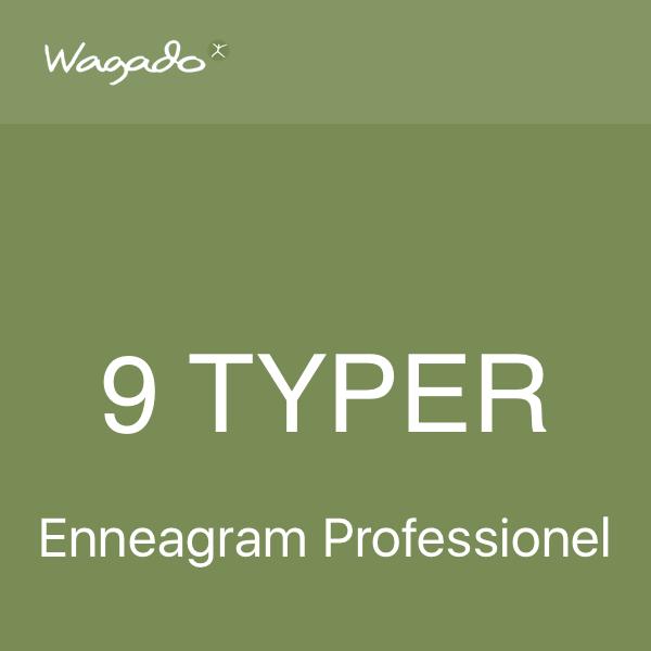 Enneagramrapport professionel rapport