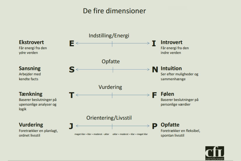 Jungs Type Indikator