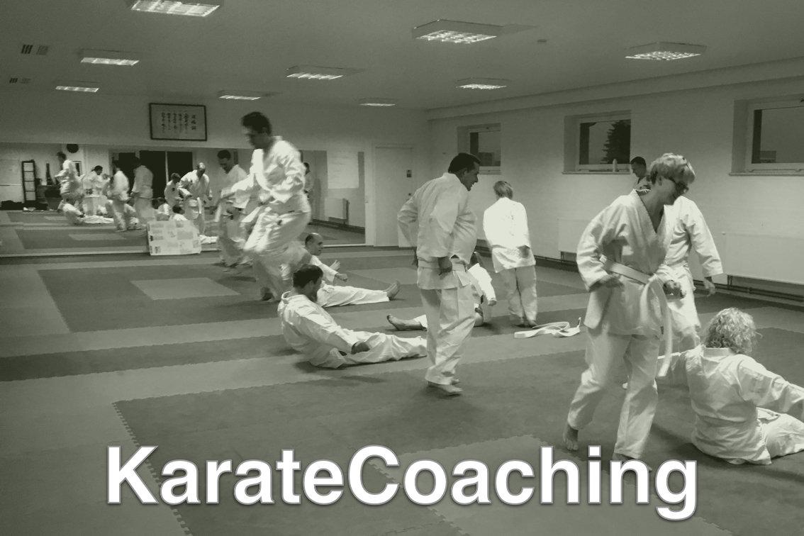 KarateCoaching