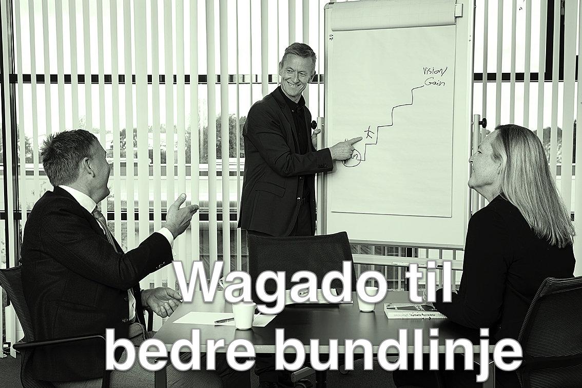 Foredrag Wagado til bedre bundlinje